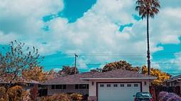 garage with palm tree